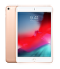 Apple iPad Mini MUXE2TU/A  Wi-Fi + Cellular 256GB  Gold Tablet
