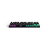 Steelseries Apex M750 TKL RGB Mekanik Gaming Klavye