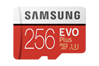 Samsung Fla 256GB Msd Evo Plus 100Mb /S