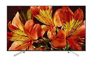 """SONY KD85XF8596BAEP 85"""" 215 Ekran 4K Ultra HD Smart LED TV ( OUTLET )"""