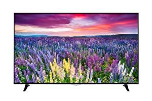 """Vestel 65UD8950 65"""" 165 Ekran 4K Ultra HD Smart LED TV"""