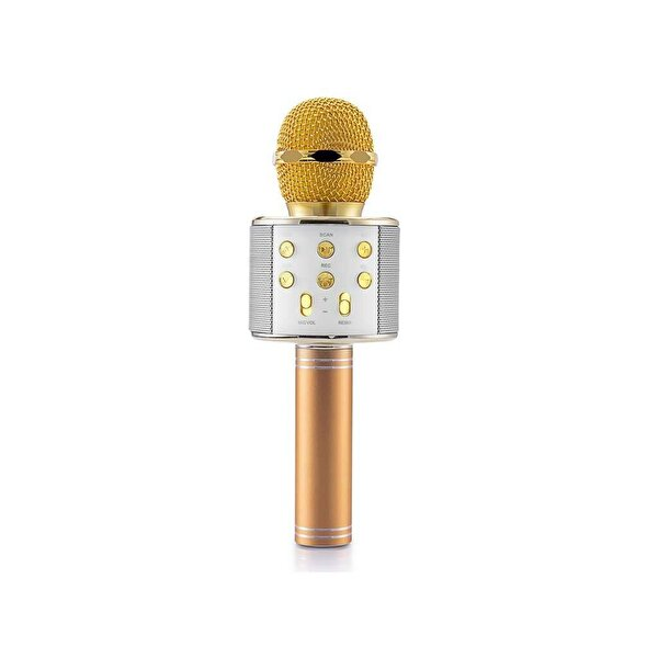 Goldmaster Star 2018 Karaoke Mikrofon