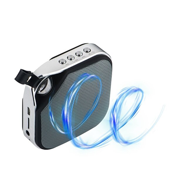 Goldmaster Enjoy Siyah 60 Radyolu Bluetooth Speaker