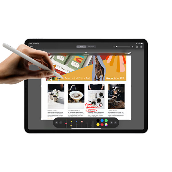 AppIe  İPad Pro MXDG2TU/A Wifi 1TB 11 inç Space Grey Tablet