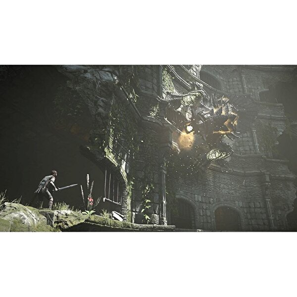 Sony Shadow Of The Colossus PS4 Oyun