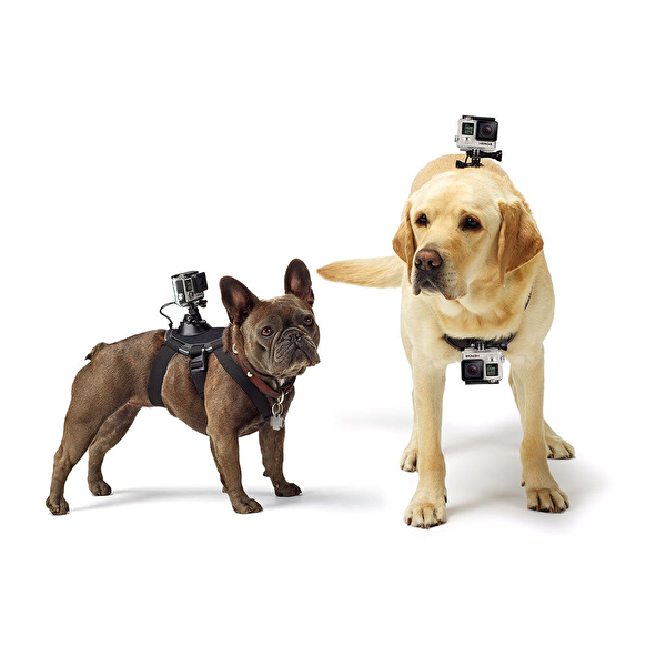 Gopro ADOGM-001 Köpek İçin Bağlantı Parçası